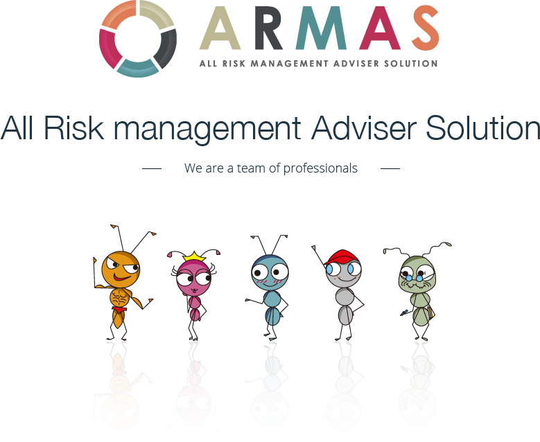 ARMAS - All Risk management Adviser Solution